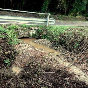 Continua la ripulitura dei fossati Sticciano